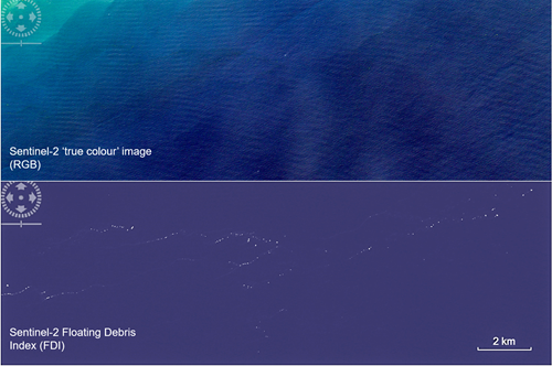 Comparison of true colour satellite image on top with bottom image showing Floating Debris INdex (FDI)