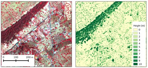 Hyperspectral data shown as false colour composite to emphasise vegetation in red (left) and LiDAR derived canopy height model.